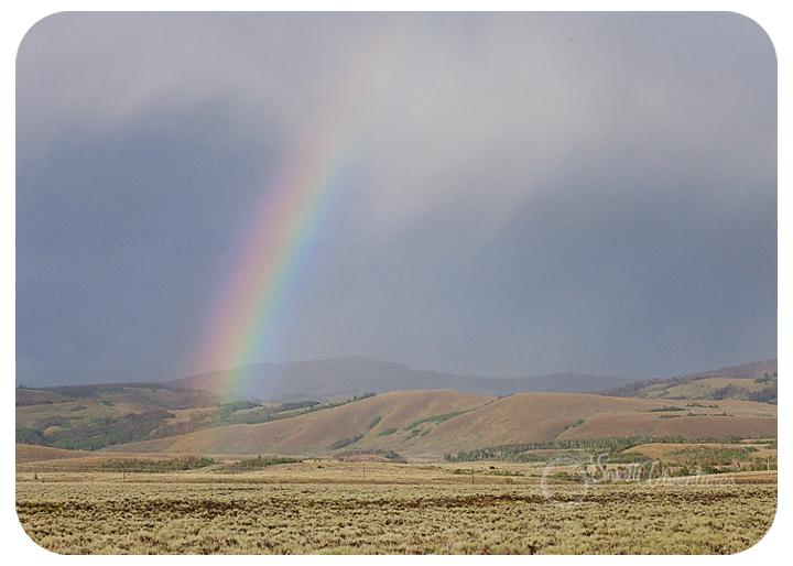 rainbowfb