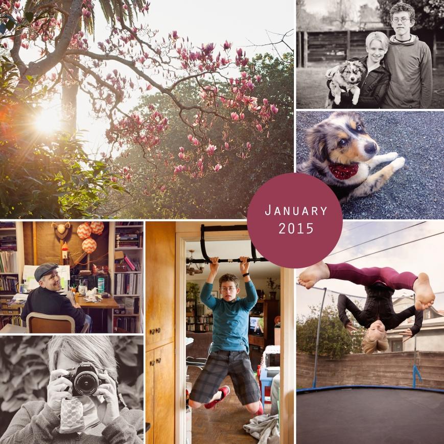 january2015small